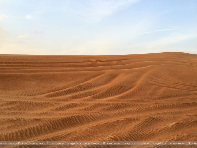 Saudi Arabia: Missing woman found buried in desert